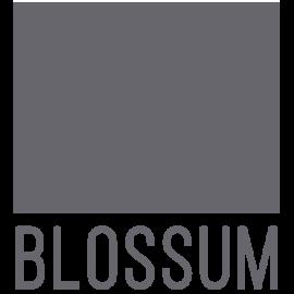 Blossum Logo Grey 3